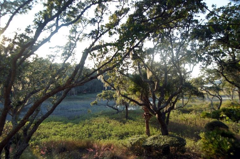 Hilton Head View.jpg